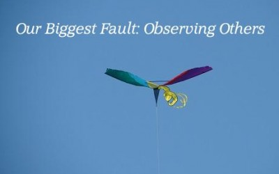 Our Biggest Fault: Observing Others