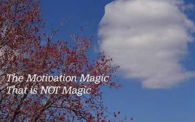 The Motivation Magic That is NOT Magic